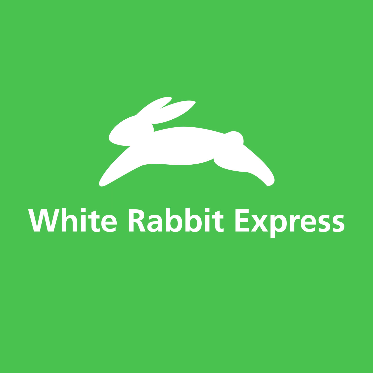What is the best Japan shopping service? | White Rabbit Express